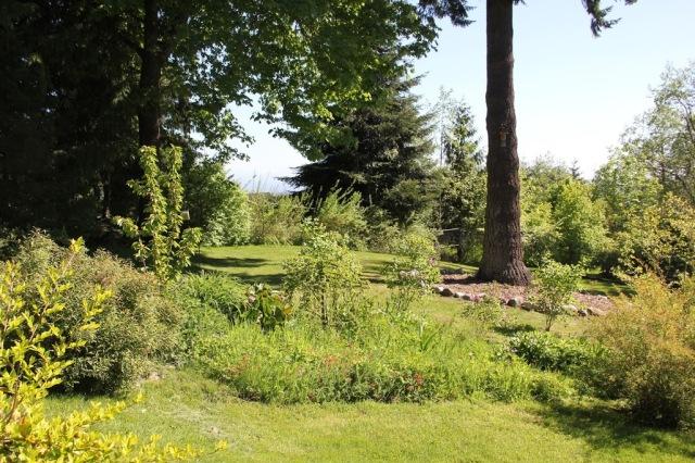 lupinehill